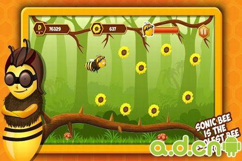 嗡嗡蜜蜂 v1.2,Sonic Bees