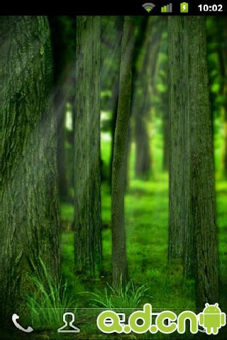 3d动态壁纸森林下载分享展示