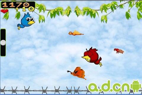 飛鳥冒險 v1.1,FlyBird Adventure