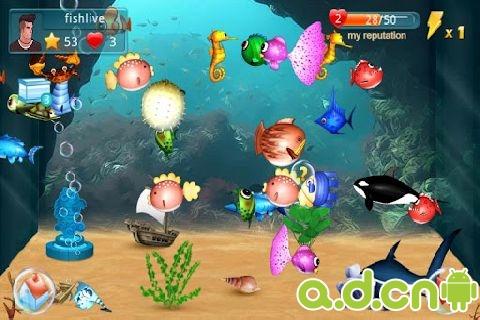 水族箱 Fish Live v1.2.6-Android养成游戏類遊戲下載
