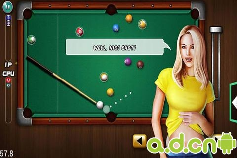 口袋台球 v1.0.9,Pocket Billiards