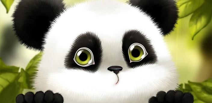 >>萌萌小熊猫动态壁纸
