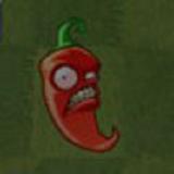 墨西哥胡椒