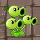 三联装豌豆