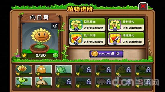 植物大战僵尸2植物进阶图文介绍 向日葵进阶
