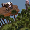 动物空岛3.0